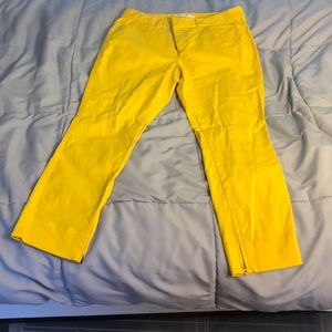 Yellow loft pants